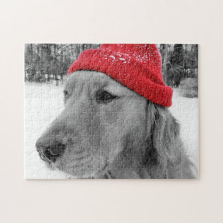 Ski Dog Golden Retriever Jigsaw Puzzle