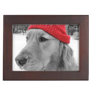Ski Dog Golden Retriever Memory Boxes