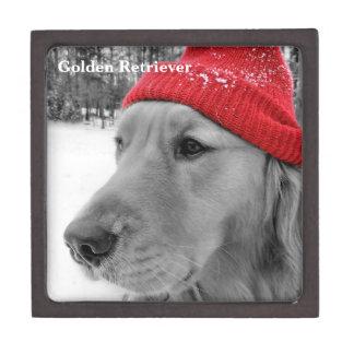 Ski Dog Golden Retriever Premium Gift Boxes