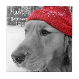 Ski Dog Golden Retriever Tiles