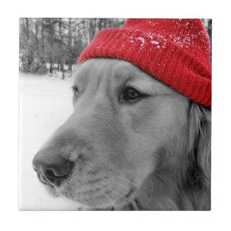 Ski Dog Golden Retriever Ceramic Tile