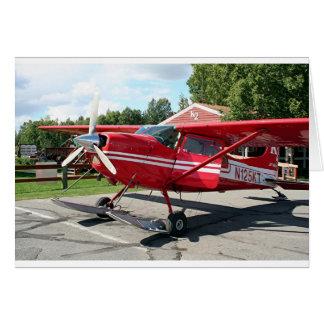 Ski plane, Talkeetna, Alaska, USA Card