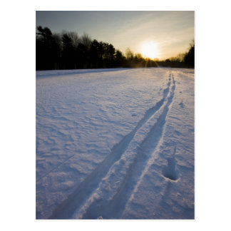 Ski tracks at the Willowbrook Farm Preserve in Postcard