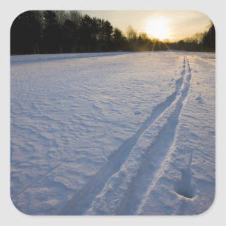 Ski tracks at the Willowbrook Farm Preserve in Square Sticker