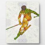 Skiing 01.jpg plaques
