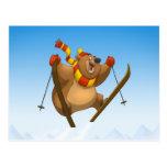 Skiing Bear Postcards