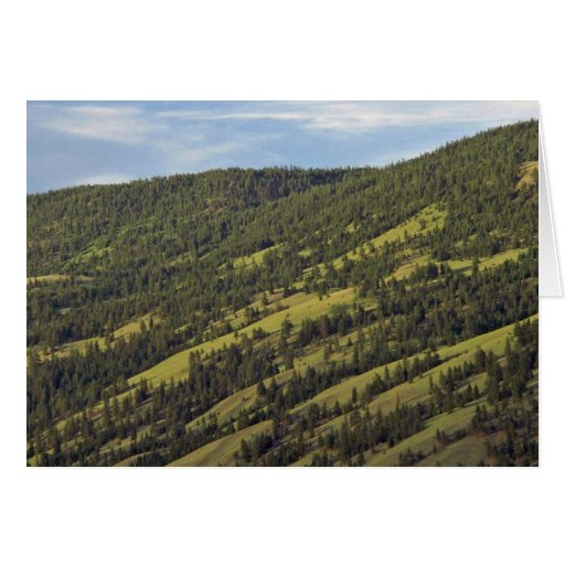 Skiing Grounds In Summer Card