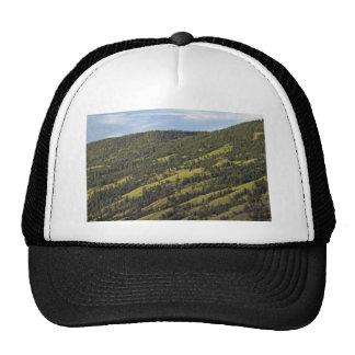 Skiing Grounds In Summer Trucker Hat