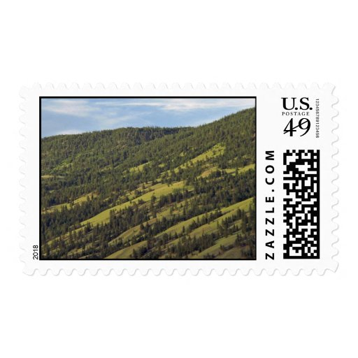 Skiing Grounds In Summer Postage