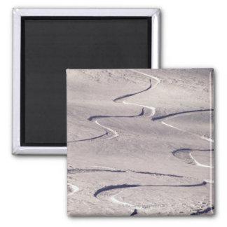 Skiing Tracks Magnet