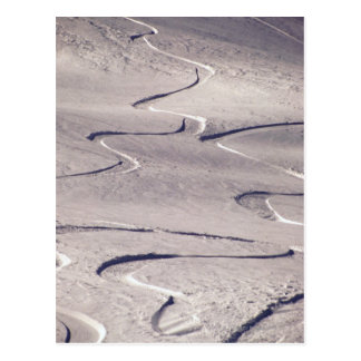 Skiing Tracks Postcard