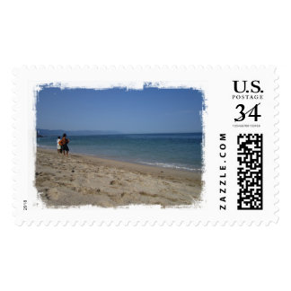 Skimmers Waiting for a Wave Postage