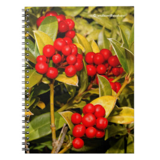 Skimmia Japonica Berries and Leaves Notebook