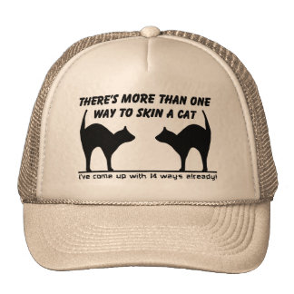 Skin A Cat Funny Hat Humor