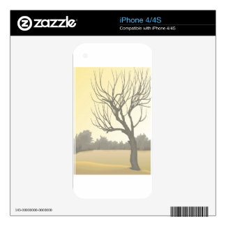 Skin iPhone 4 Decals For The iPhone 4S