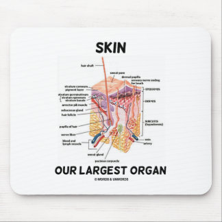 Skin Our Largest Organ (Dermal Layers) Mouse Pad