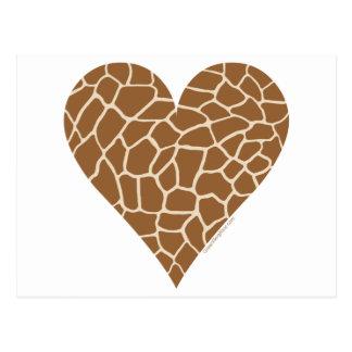 Skin Pattern, Colors of the Giraffe Postcard