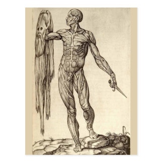Skinned Alive Postcard