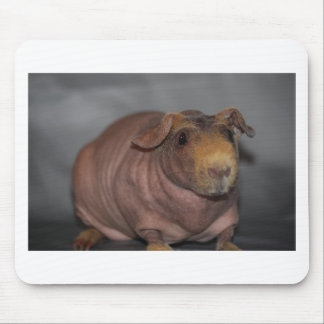 Skinny Pig Mouse Pad