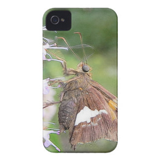 Skipper Butterfly On Agastache Case-Mate iPhone 4 Cases