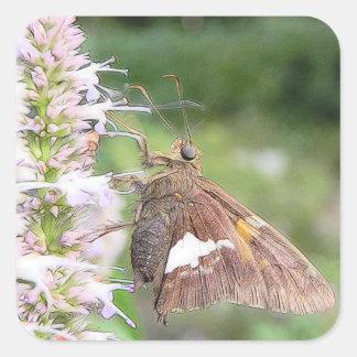 Skipper Butterfly On Agastache Square Sticker