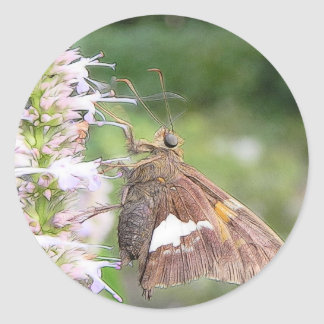 Skipper Butterfly On Agastache Classic Round Sticker