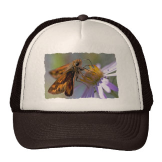 Skipper Butterfly on Aster Photo Mesh Hats