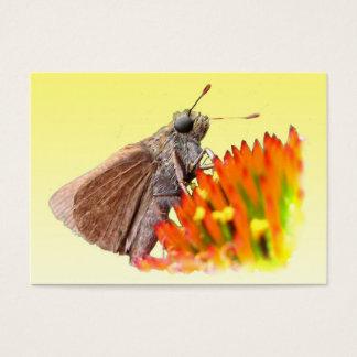 Skipper on Echinacea ATC Business Card