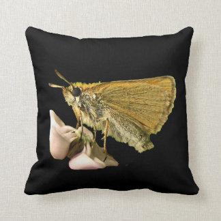Skipper on Milkweed Pillow