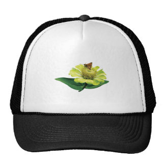 Skipper on Yellow Zinnia Hat