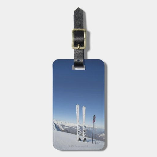 Skis and Ski Poles Luggage Tag