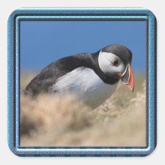 Skomer Island Puffin Stickers