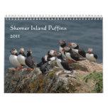 Skomer Island Puffins 2011 Wall Calendars