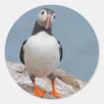 Skomer Island Puffins Classic Round Sticker