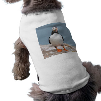 Skomer Island Puffins Dog T Shirt