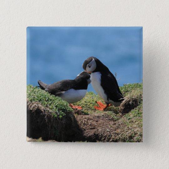 Skomer Island Puffins Pinback Button