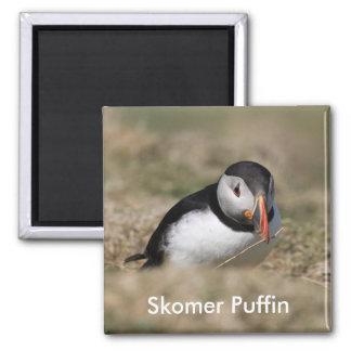 Skomer Island Puffins Refrigerator Magnets