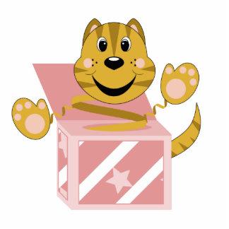 Skrunchkin Cat Toby In Pink Box Photo Sculpture Ornament