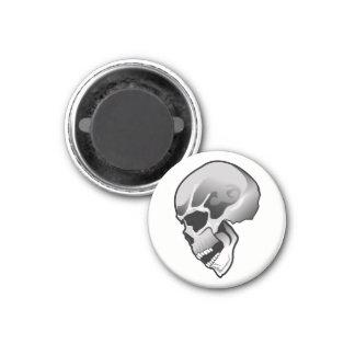 Skull 3 magnet