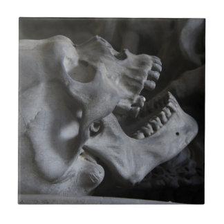 skull-476 azulejo cuadrado pequeño