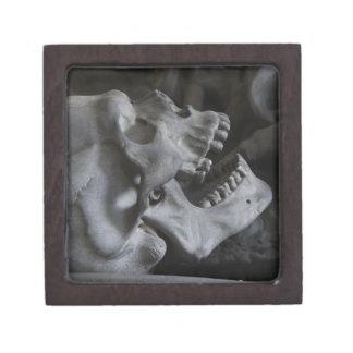 skull-476 cajas de joyas de calidad