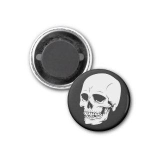 Skull 6 magnet