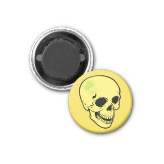 skull 7 magnet