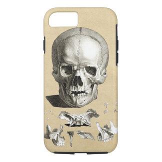 Skull and Bones Anatomy iPhone 8/7 Case