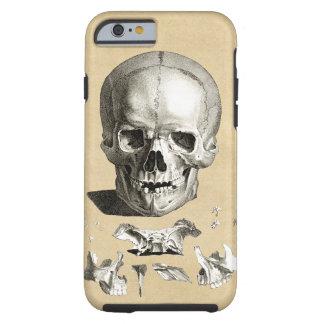 Skull and Bones Anatomy Tough iPhone 6 Case