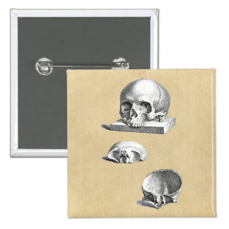 Skull and Bones Orthopedic Drawing Button