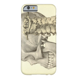 Skull and Cervical Spine Phone Cover