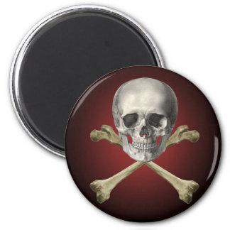 Skull and cross bones magnet