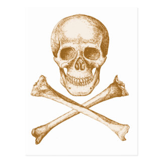 Skull and Cross Bones - Sepia Postcard