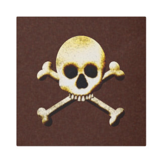 Skull And Crossbones Metal Photo Print